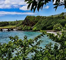Makena Beach ~ Maui by Photophatty67