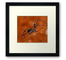 Electric Orange Slide    ( Black Widow Series) Framed Print