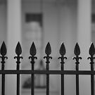 White House Fence by Tracey Hampton