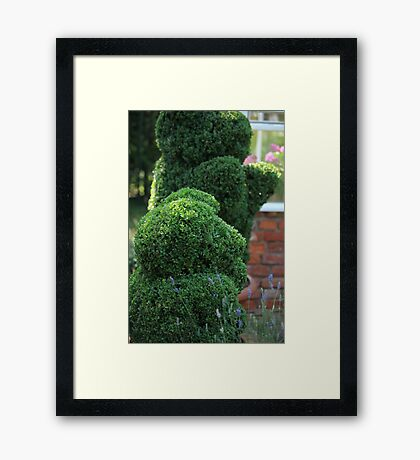 green bear topiary Framed Print