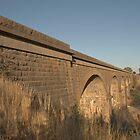 Malmsbury Bridge Close Up  by mspfoto