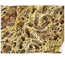 Sea rock texture Poster