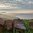 Robin Hoods Bay Fog by apple88