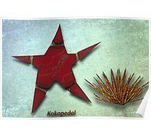Starfish and Sea Urchan The Metal Aquarium Poster