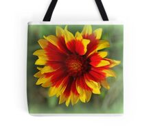 Beautiful Indian Blanket Flower Tote Bag