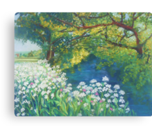 River Cerne, Dorset Canvas Print