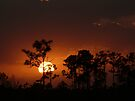 Sunset over The Grassy Plains by JKKimball
