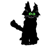 Jack the Fuzzy Black Cat Photographic Print