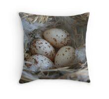 Nest of eggs Throw Pillow