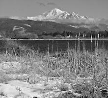 Wiser Lake View - B&W by Appel