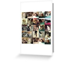 Kitty Collage Greeting Card