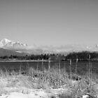 Baker & Twin Sisters overlooking Wiser Lake - B&W by Appel