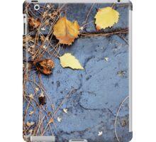 Fairy Dust iPad Case/Skin