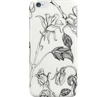 botanical floral line drawing black and white iPhone Case/Skin