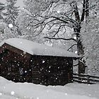 Winter Hut by maskedfan