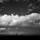 pilgrim by Kerryn Rogers