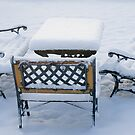 Winter Picnic by Mark Thompson