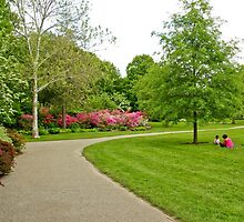 Fairmount Park Azalea Garden - Philadelphia Pennsylvania USA by MotherNature