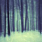 winter-lude by JOSEPHMAZZUCCO
