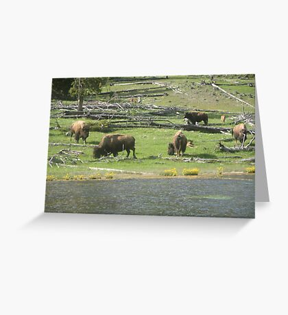 Food for everyone  Greeting Card
