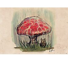 Mouse Sheltering Under Toadstool Photographic Print