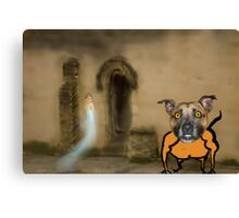 Mad Dog Guardian of the Lady Who Doesn't Exist Canvas Print