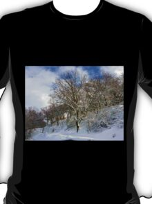 Winter's Morning T-Shirt
