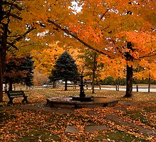 A Quiet Moment on the Common by Wayne King