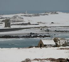 Snowy Bay by PhotoToasty
