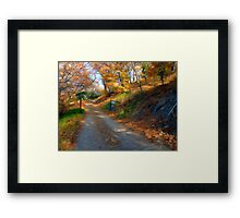 The Road to Mr. Bowman Framed Print