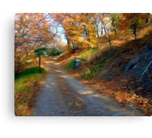 The Road to Mr. Bowman Canvas Print