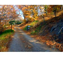 The Road to Mr. Bowman Photographic Print