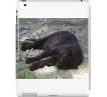 Black Panther iPad Case/Skin