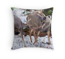Mule Deer Buck Fight 3 Throw Pillow