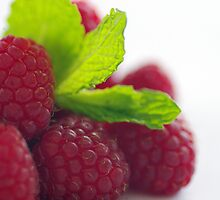 Raspberries and Mint by DiEtte Henderson