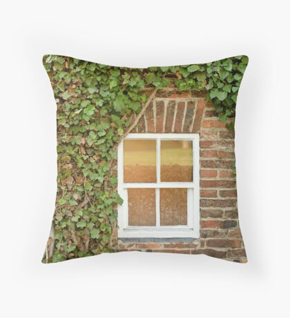 Captain Cook's Cottage (Detail #1) Throw Pillow