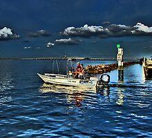 Charlotte Harbor, FL by LudaNayvelt