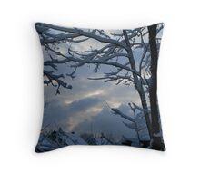 Suburban Winter Throw Pillow