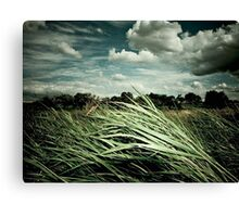 Independent Summer (2004) Canvas Print