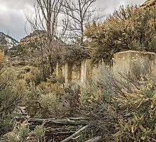 Ghost Town Foundation in Standardville, Utah by Sue Smith
