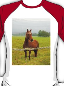 Horse in the pasture T-Shirt