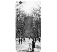 The Mall - Central Park iPhone Case/Skin