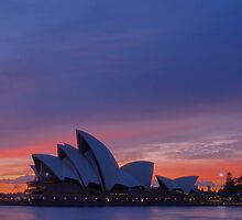 Sydney Opera House Sunrise by Toni McPherson