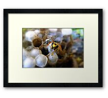 Well, Hello there!! Framed Print