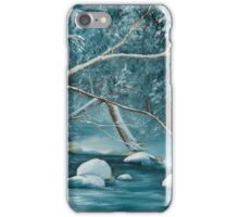 Winter Snow iPhone Case/Skin