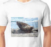 Coconut Husk Unisex T-Shirt