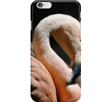 The Sacred Old Flamingoes iPhone Case/Skin