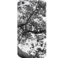 Lost In Branches iPhone Case/Skin