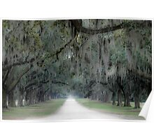 An Old Southern Road Poster