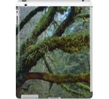 Olympic National Park iPad Case/Skin